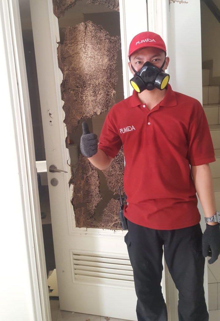 karyawan anti rayap fumida
