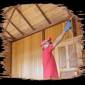 proses semprot anti rayap di plafon rumah