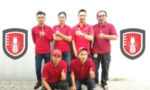 team Jasa anti rayap Jakarta