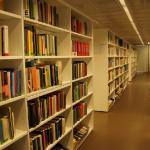 Cara Menghilangkan Rayap yang Menyerang Lemari Buku